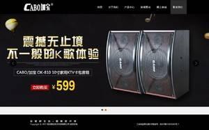 杭州丽岳电子科技有限公司 音响设备、办公用品